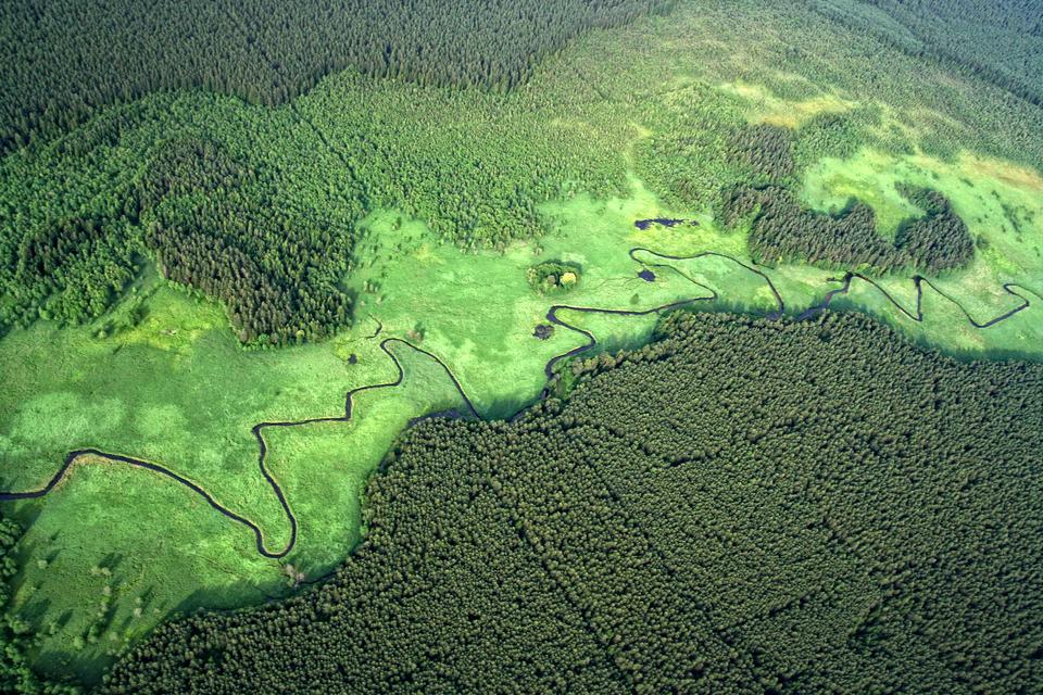 Fotografia lotnicza przedstawia jasnozielony obszar zciemnym wężykiem rzeki. Po obu stronach ciemnozielone obszary porośnięte lasem. To dolina Rospudy.