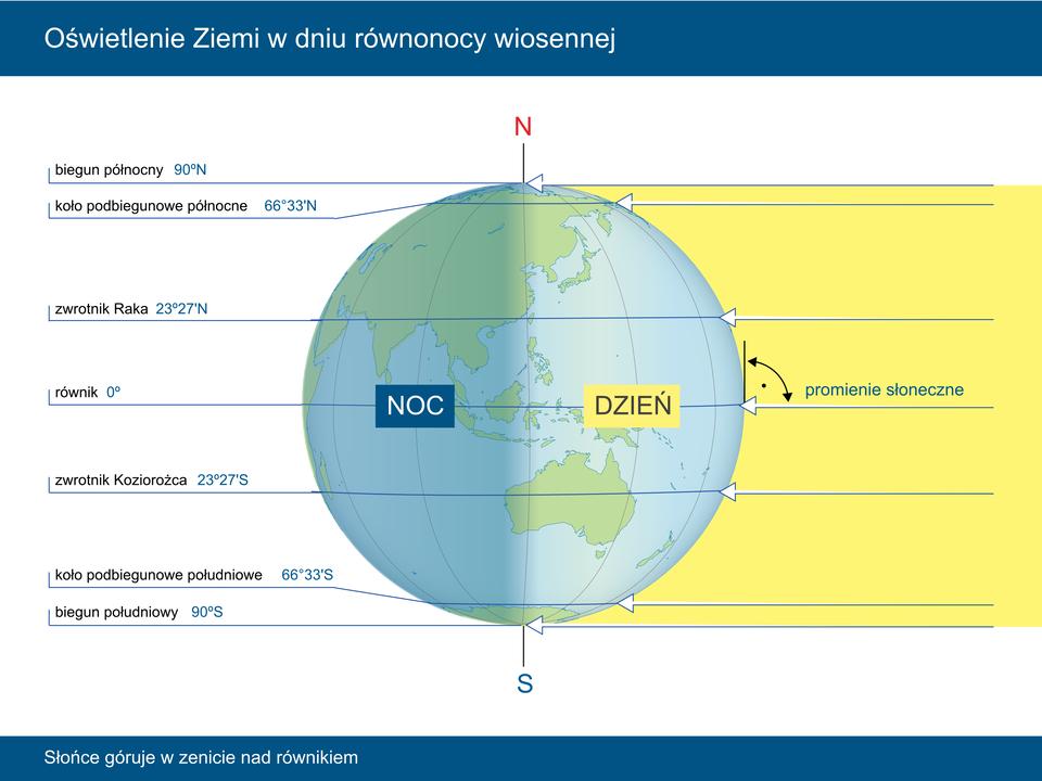 Ilustracja przedstawia kulę ziemską. Powierzchnię kuli pokrywają południki irównoleżniki. Kontynenty obrysowane niebieskim konturem. Przez środek kuli ziemskiej przebiega pionowa oś Ziemi. Nad biegunem północnym litera N, poniżej południowego litera S. Prawa półkula oświetlona żółtymi promieniami słonecznymi. Napis: dzień. Lewa półkula wcieniu. Napis: noc. Na dole, pozioma linia wskazuje biegun południowy. Opis 90 stopni szerokości geograficznej południowej. Powyżej równoleżnik – koło podbiegunowe południowe. Opis 66 stopni i33 minuty szerokości geograficznej południowej. Powyżej zwrotnik Koziorożca 23 stopnie i27 minut szerokości geograficznej południowej. Dokładnie wpołowie równik. Zero stopni. Powyżej na półkuli północnej zwrotnik Raka 23 stopnie i27 minut szerokości geograficznej północnej. Najwyżej to poziomy równoleżnik przechodzący przez koło podbiegunowe północne 66 stopni i33 minuty szerokości geograficznej północnej. Na samej górze kuli ziemskiej biegun północny. 90 stopni szerokości geograficznej północnej. Promienie słoneczne tworzą zpowierzchnią Ziemi na równiku kąt prosty.