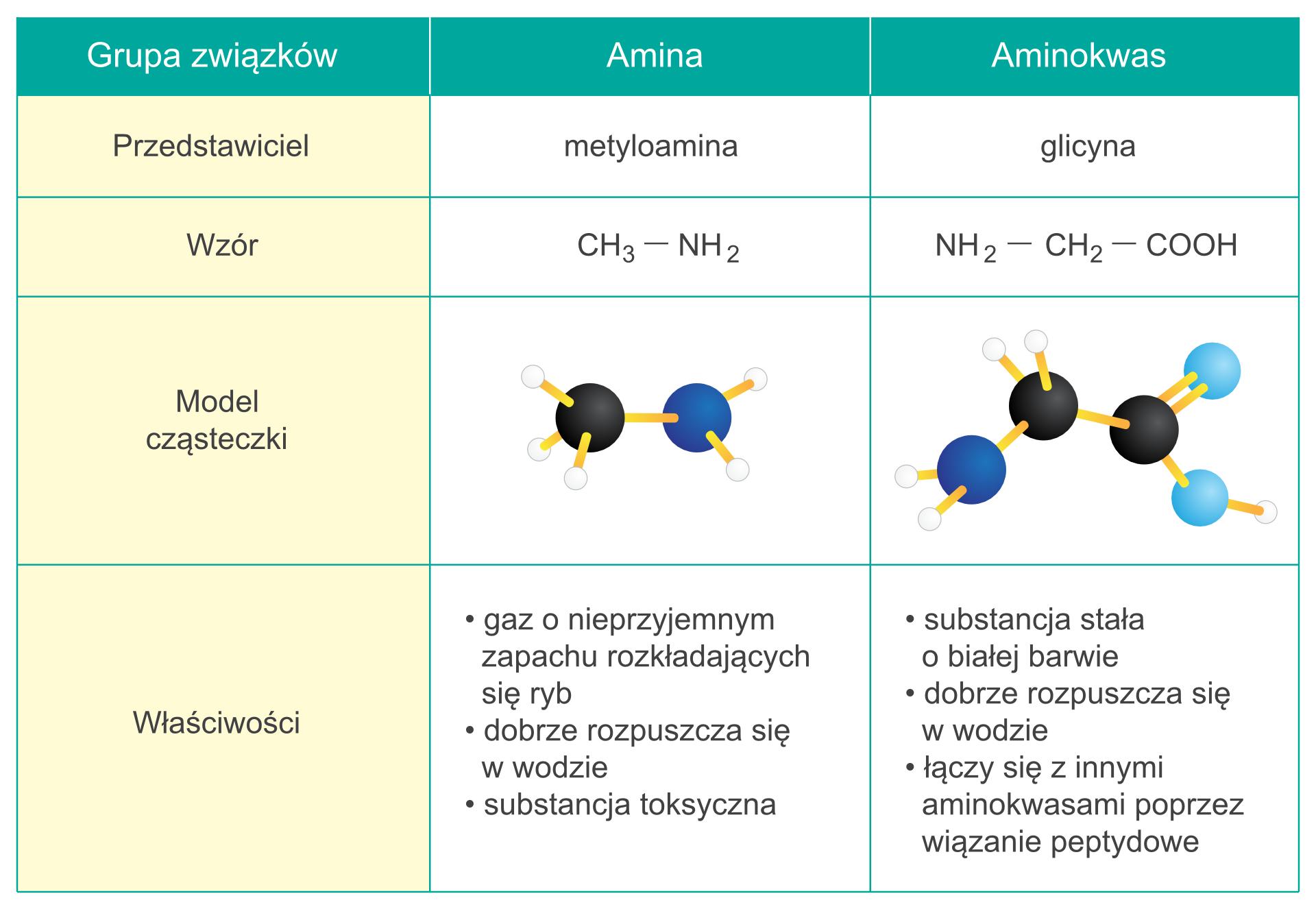 Aminy_aminokwasy_AW