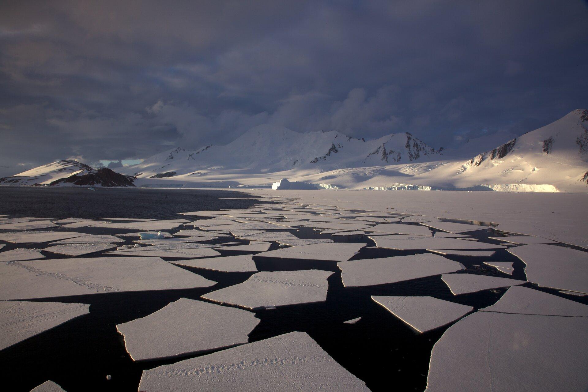 Zdjęcie przedstawia krajobraz podbiegunowy. Daleko wtle spowite wcieniu ośnieżone wzgórza izachmurzone niebo, plan bliższy oświetlony przez promienie Słońca. Na pierwszym planie równy ośnieżony teren przechodzi wduże fragmenty kry lodowej unoszącej się na powierzchni spokojnego morza. Na krze widać tropy zwierząt, co pozwala ocenić powierzchnię pojedynczych kawałków na kilka metrów kwadratowych.