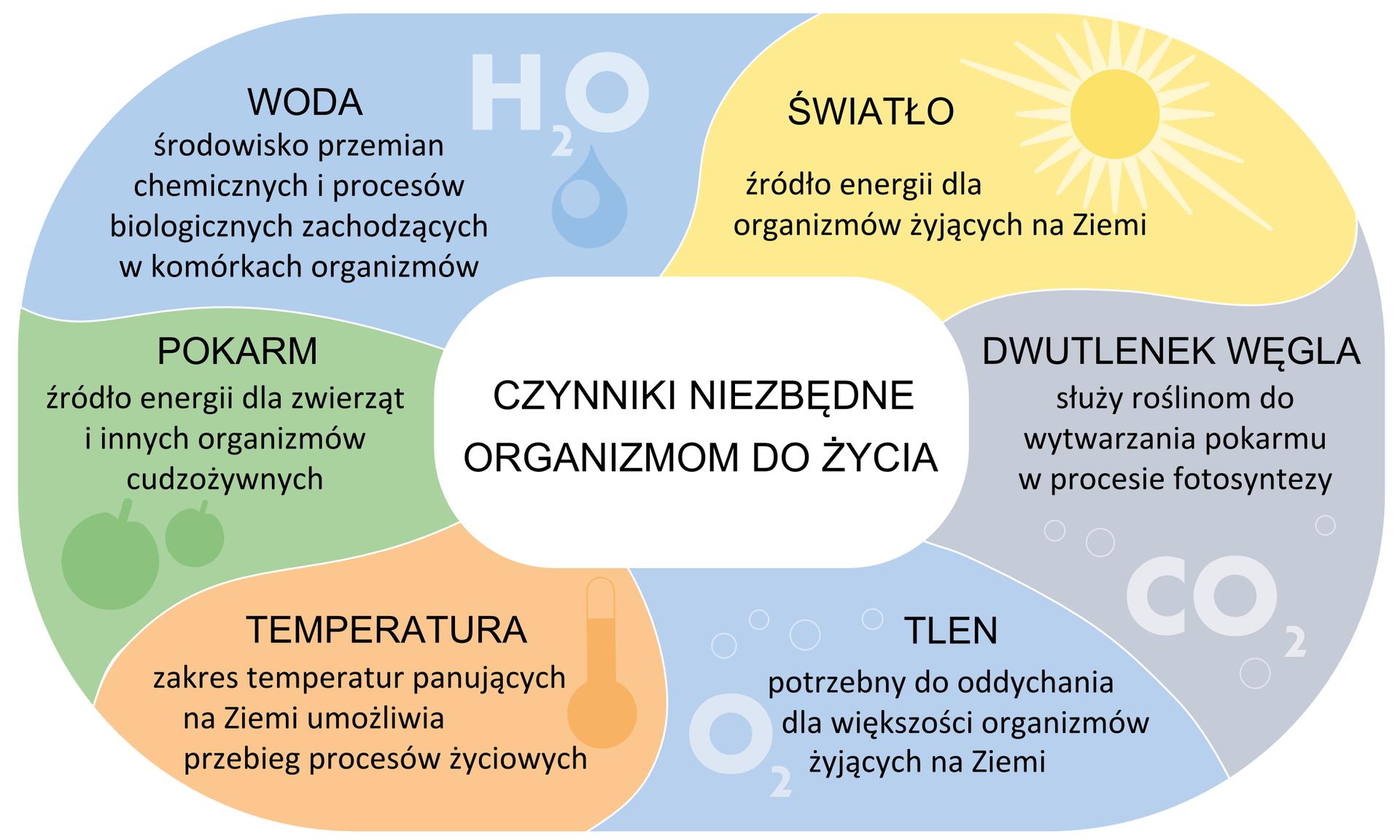 Ilustracja przedstawia schemat, podzielony na sześć części wróżnych kolorach. Wkażdej zczęści jest opisany jeden czynnik, niezbędny organizmom do życia. Wlewym górnym rogu na błękitnym tle widać napis WODA isymbol H2O. Woda jest środowiskiem przemian chemicznych iprocesów biologicznych. Dalej wprawo na żółtym tle jest rysunek słońca inapis ŚWIATŁO. Jest ono źródłem energii dla organizmów żyjących na Ziemi. Niżej znajduje się jasno fioletowe pole znapisem DWUTLENEK WĘGLA isymbolem CO2. Ten gaz służy roślinom do wytwarzania pokarmu wprocesie fotosyntezy. Wprawym dolnym rogu schematu na niebieskim tle widać napis TLEN isymbol O2. Tlen jest potrzebny większości organizmów do oddychania. Wlewym dolnym rogu na różowym tle znajduje się napis TEMPERATURA irysunek termometru. Zakres temperatur na Ziemi umożliwia przebieg procesów życiowych. Wyżej, na zielonym tle znajduje się napis POKARM idwa jabłka. Pokarm jest źródłem energii dla zwierząt iinnych organizmów cudzożywnych. *
