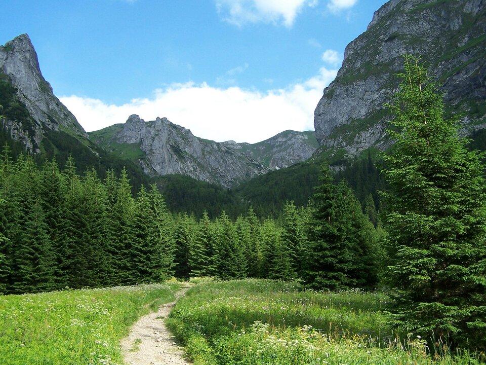 Krajobraz wapiennych Tatr Zachodnich