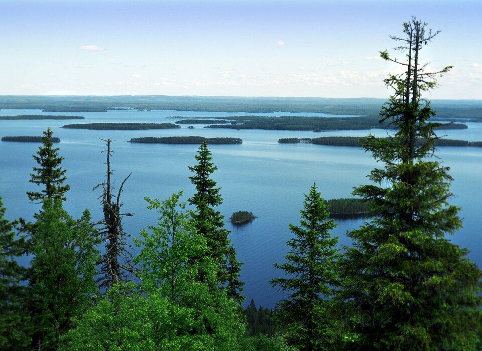 Na zdjęciu akwen wodny, wiele małych wąskich wysp, dalej ląd. Na pierwszym planie las mieszany.
