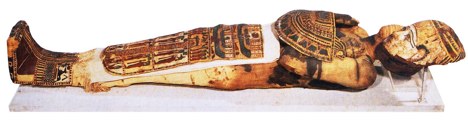 Mumia mężczyzny zIII-II wieku p.n.e.,obecnieprzechowywana wLuwrze wParyżu Mumia mężczyzny zIII-II wieku p.n.e.,obecnieprzechowywana wLuwrze wParyżu Źródło: Musée du Louvre, tylko do użytku edukacyjnego.