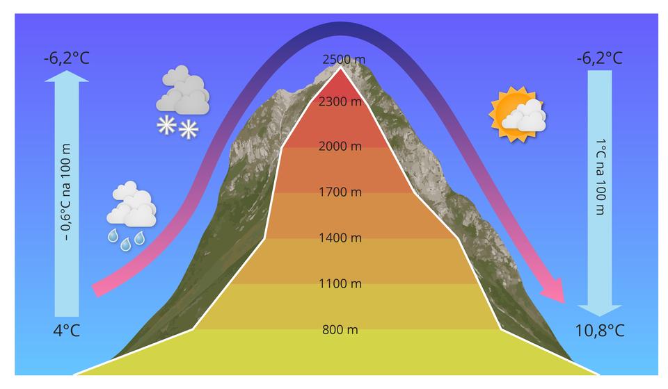 Schemat ilustruje powstawanie wiatru halnego. Po lewej stronie szczytu górskiego, białą strzałką skierowaną do góry oznaczono wysokie ciśnienie powietrza, apo prawej stronnie szczytu białą strzałka skierowaną wdół oznaczono ciśnienie niskie. Fioletową strzałką oznaczono kierunek wznoszenia się powierza. Powietrze po lewej stronie szczytu unosi się do góry iochładza ominus 0,6 OC na każde 100 mwysokości szczytu. Upodnóża szczytu na wysokości 800 mjest temp. 4oC, na wysokości 2500 m, jest temperatura minus 6,2oC. Powerze ochładzając się powoduje kondensacje pary wodnej ipowstawanie chmur, zktórych pada deszcz niżej lub śnieg wyżej szczytu. Po prawej stronie szczytu powietrze oznaczone fioletową strzałką opad wdół, jako ciepły, suchy isilny wiatr halny. Pogoda jest słoneczna.