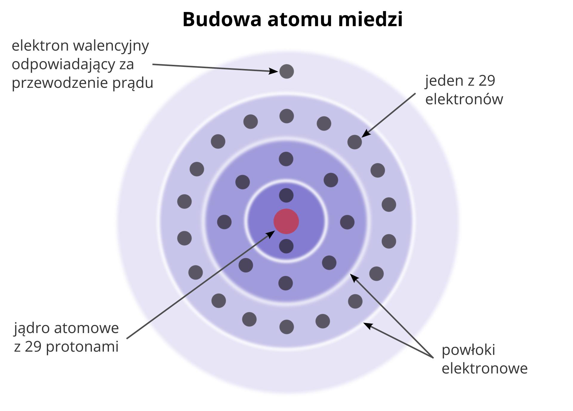 """Ilustracja przedstawia budowę atomu miedzi. Na górze ilustracji tytuł czarnymi literami: budowa atomu miedzi. Na środku schemat atomu miedzi. Schemat to pięć okręgów. Okręgi są umieszczone jeden wdrugim. Od najmniejszego do największego. Odstępy między kolejnymi okręgami są jednakowe. Wśrodku okręgu znajduje się różowe koło. Na środku koła litery """"ce-u"""". To symbol miedzi. Różowe koło to jądro atomowe. Wokół jądra znajdują się cztery okręgi. Okręgi to powłoki elektronowe. Powłoki mają postać cienkich linii. Na każdej powłoce znajdują się szare małe koła. Małe koła to elektrony. Wokół jądra krąży dwadzieścia dziewięć elektronów. Na każdej powłoce znajduje się inna ilość elektronów. Najbliżej jądra krążą dwa elektrony. Elektrony są umieszczone naprzeciw siebie. Jeden nad jądrem, na dwunastej. Drugi poniżej jądra na szóstej. Na drugiej powłoce krąży osiem elektronów. Elektrony są umieszczone wrównych odstępach od siebie. Na trzeciej powłoce znajduje się osiemnaście elektronów. Na zewnętrznej czwartej powłoce znajduje się jeden elektron. Jest to elektron walencyjny. Umieszczony nad jądrem, na dwunastej. Elektrony opisane są poprzez czarne strzałki wskazujące umiejscowienie elektronu na powłokach. Nad elektronem walencyjnym napis: elektron walencyjny odpowiadający za przewodzenie prądu. Po prawej, strzałka wskazuje dowolny elektron na trzeciej powłoce. Obok napis: jeden zdwudziestu dziewięciu elektronów. Poniżej dwie strzałki wskazuję przestrzeń między okręgami. Napis obok: powłoki elektronowe. Poniżej ilustracji strzałka wskazuje grotem centrum atomu miedzi. Obok informacja: jądro atomowe zdwudziestoma dziewięcioma protonami ielektronami."""