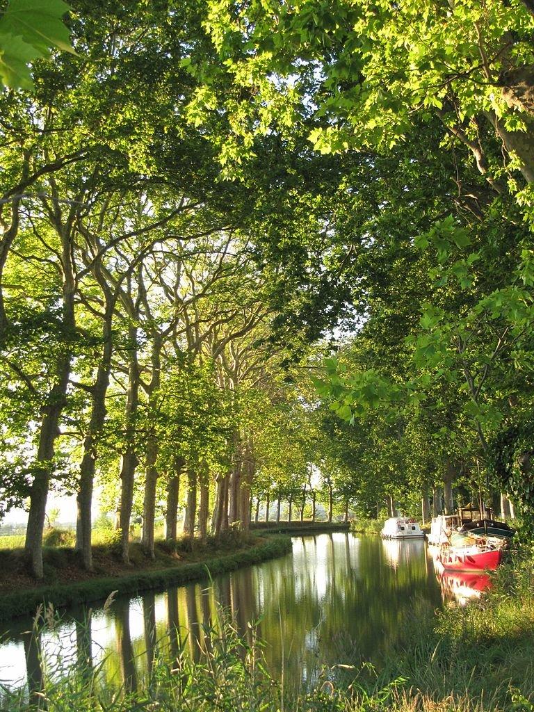 Kanał Południowy we Francjiwybudowany został wXVII w. istanowił częśćpołączenia śródlądowego między Atlantykiem aMorzem Śródziemnym. Początkowo inwestycję rozpoczęto jako przedsięwzięcie prywatne. Przy budowie zastosowano nowatorskie rozwiązania techniczne (np. kanał biegł wtunelu).WXXI wieku Kanał znalazł się na liście światowego dziedzictwa UNESCO. Kanał Południowy we Francjiwybudowany został wXVII w. istanowił częśćpołączenia śródlądowego między Atlantykiem aMorzem Śródziemnym. Początkowo inwestycję rozpoczęto jako przedsięwzięcie prywatne. Przy budowie zastosowano nowatorskie rozwiązania techniczne (np. kanał biegł wtunelu).WXXI wieku Kanał znalazł się na liście światowego dziedzictwa UNESCO. Źródło: Michiel1972, 2011, Wikimedia Commons, licencja: CC BY-SA 3.0.
