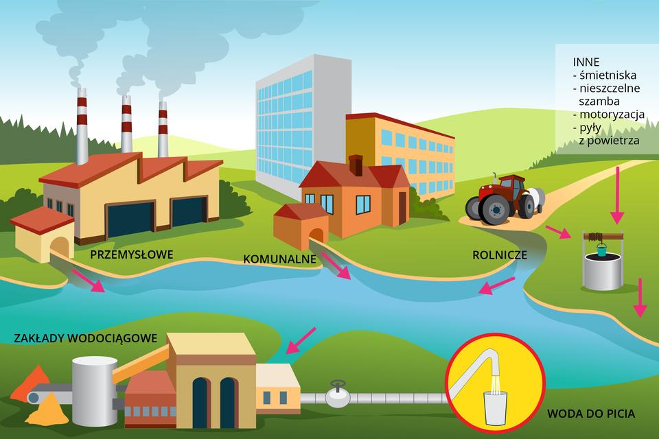 Grafika komputerowa ukazująca główne źródła zanieczyszczenia wody. Wcentrum grafiki widoczna woda do której spływają ścieki przemysłowe zfabryki, ścieki komunalne zmieszkań, ścieki rolnicze zpól oraz inne ścieki ze śmietnisk, szamb, transportu. Następnie woda dostaje się do zakładów wodociągowych, zktórych po oczyszczeniu staje się wodą do picia.
