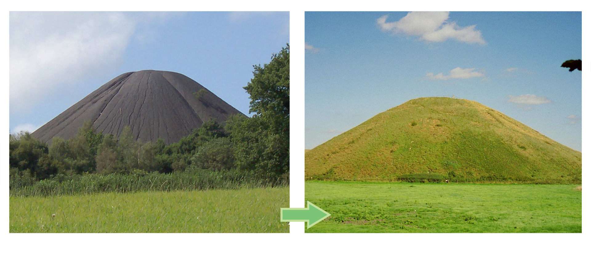 Fotografia po lewej stronie ukazuje wysoka czarną hałdę. Obok fotografia tej samej hałdy porośnięta trawą iinnymi roślinami zielnymi.