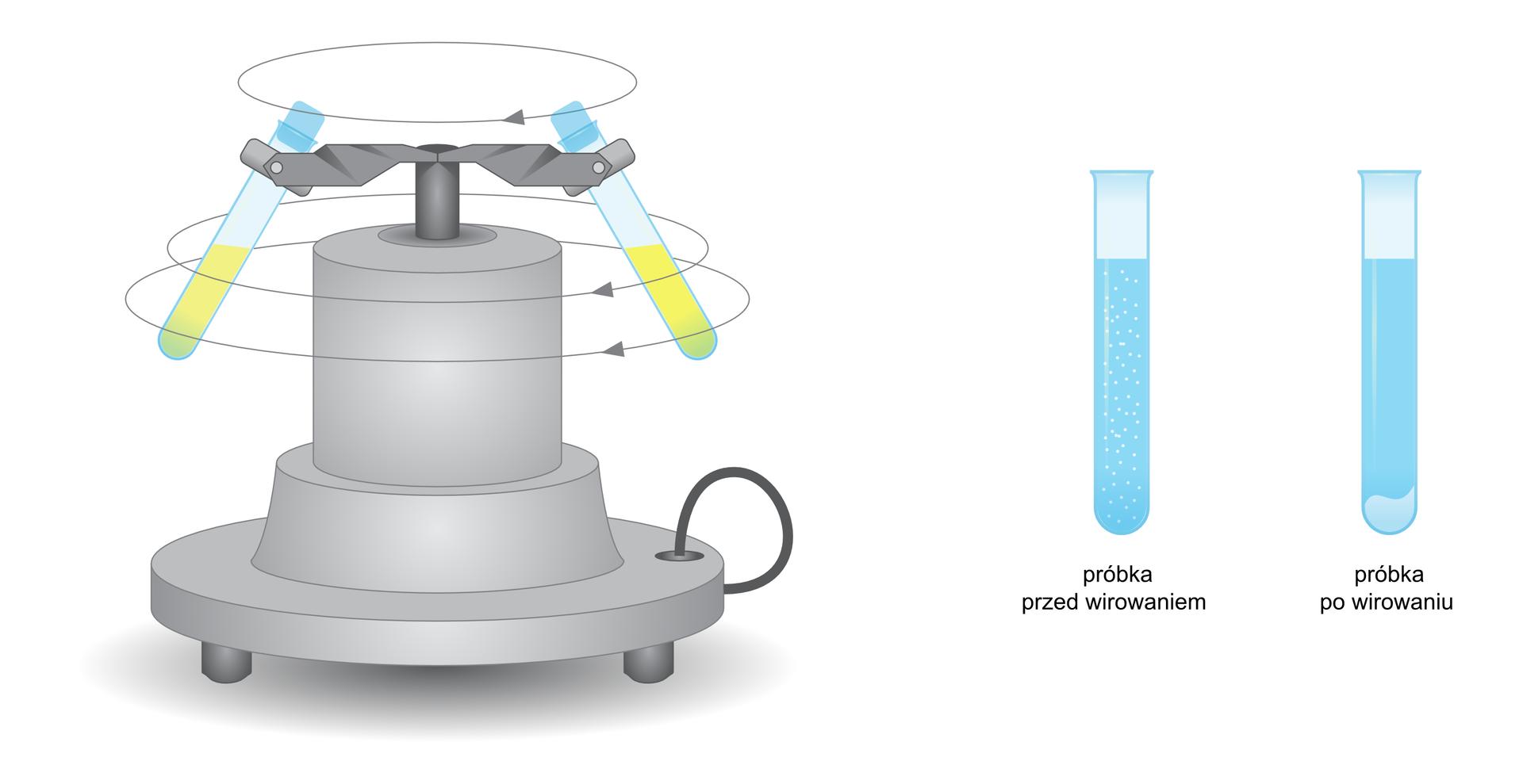 Ilustracja przedstawia wirówkę laboratoryjną, mającą postać szerszego unasady cylindra, który wgórnej części ma dwa ramiona służące do mocowania probówek pod kątem około 60 stopni do poziomu. Rysunek ma zaznaczoną oś obrotu ramion zprobówkami, który odbywa się poziomo izgodnie zruchem wskazówek zegara patrząc od góry. Po prawej strony rysunku wirówki znajdują się rysunki dwóch probówek. Pierwsza, opisana jako Próbka przed wirowaniem zawiera płyn zwidocznymi drobinkami białej zawiesiny wcałej jego objętości. Druga, opisana jako próbka po wirowaniu zawiera czysty płyn zbiałym osadem zebranym na dnie.