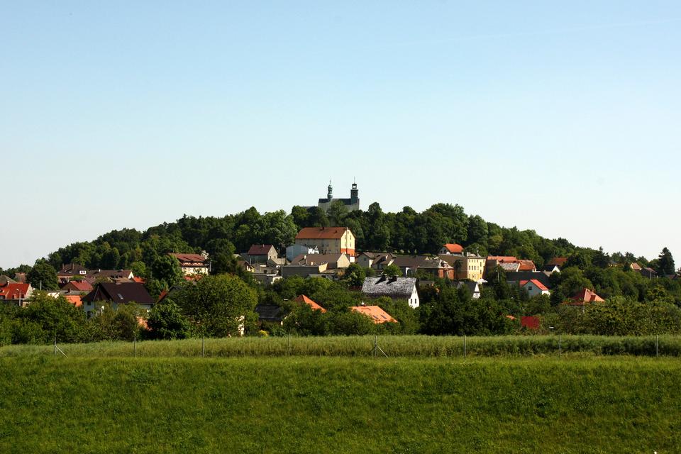Fotografia prezentuje panoramę Góry św. Anny porośniętej drzewami, pomiędzy którymi wznoszą się budynki. Na szczycie góry znajduje się kościół.