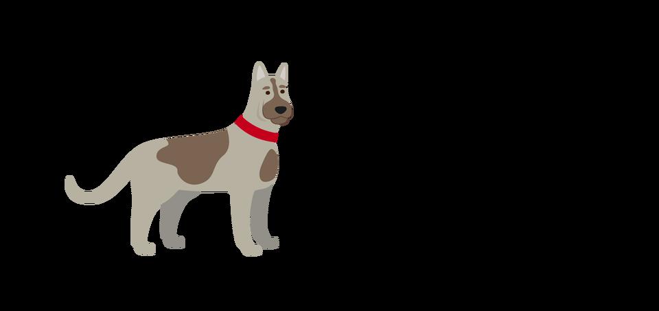 pies ilustracja Źródło: Shutterstock, tylko do użytku edukacyjnego na epodreczniki.pl.