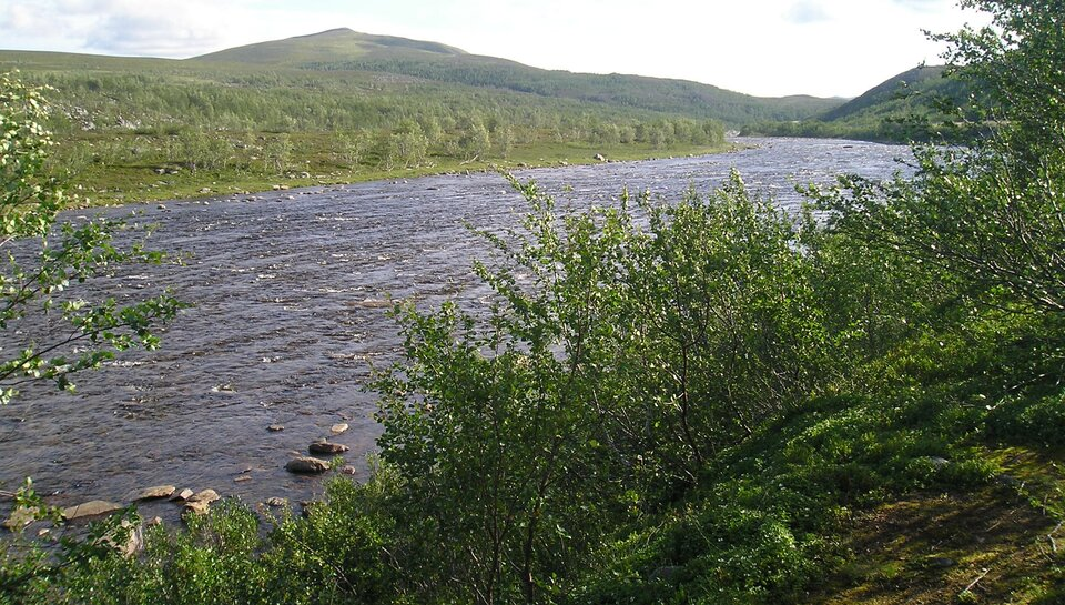 Na zdjęciu górska rzeka wgłębokiej dolinie. Dookoła pasma górskie. Na brzegu krzewy.