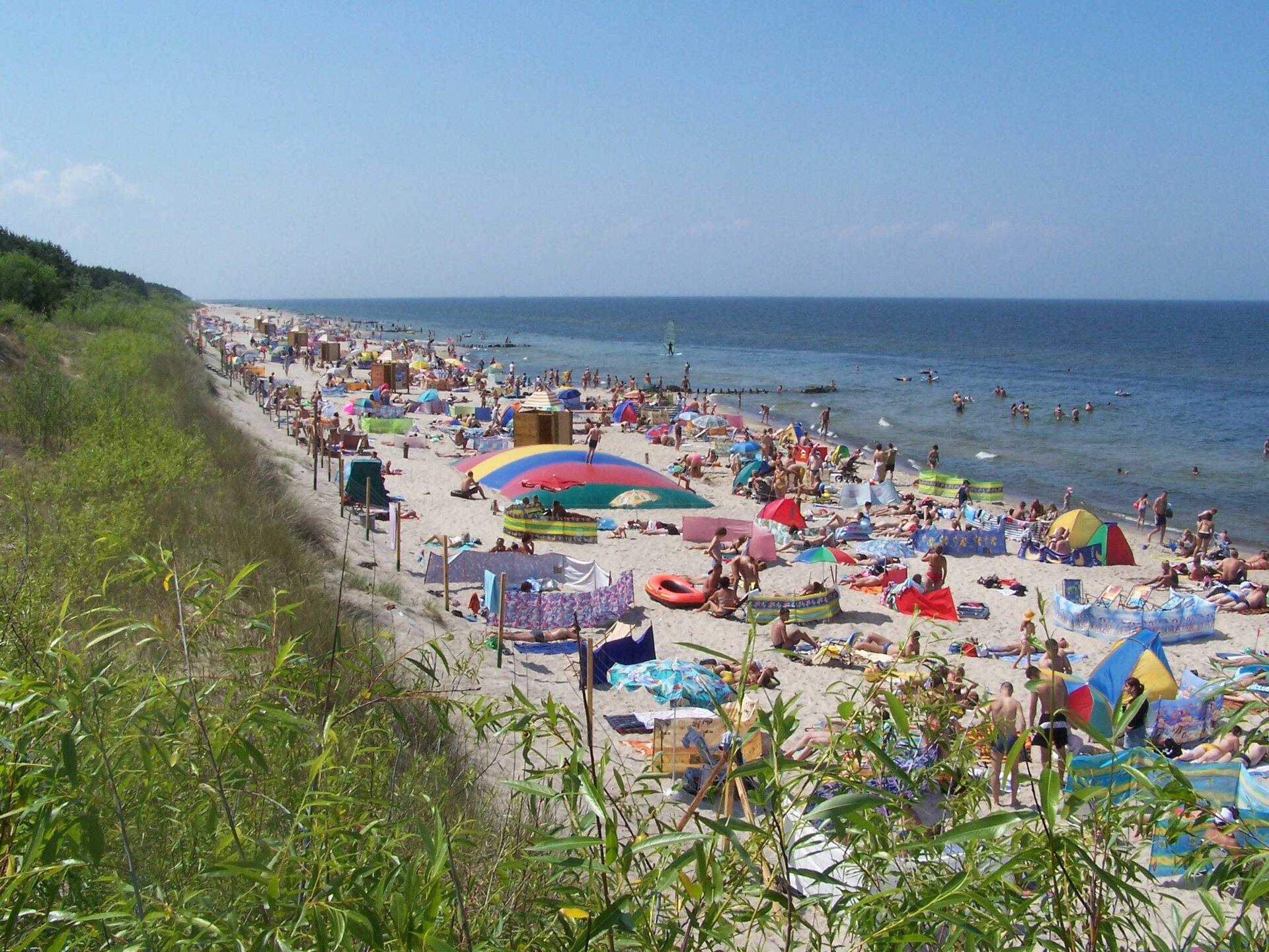Na zdjęciu brzeg morski, piaszczysta plaża, dużo ludzi, parasole, parawany. Pas trawiastych wydm.