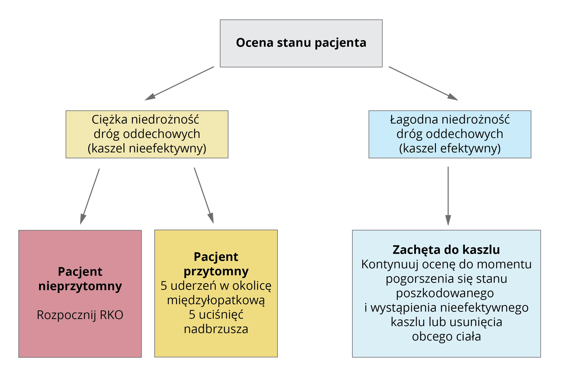 Ilustracja wformie schematu. Na górze schematu nagłówek: ocena stanu pacjenta. Poniżej dwa przypadki niedrożności dróg oddechowych. Lewa część schematu: ciężka niedrożność dróg oddechowych, kaszel nieefektywny. Poniżej podział na dwa typy pacjenta. Pierwszy typ to pacjent nieprzytomny. Rozpocznij RKO. Drugi typ to pacjent przytomny. 5 uderzeń wokolicę międzyłopatkową. 5 uciśnięć nadbrzusza. Prawa część schematu: łagodna niedrożność dróg oddechowych, kaszel efektywny. Poniżej instrukcja: zachęta do kaszlu. Kontynuuj ocenę do momentu pogorszenia się stanu poszkodowanego iwystąpienia nieefektywnego kaszlu lub usunięcia obcego ciała.