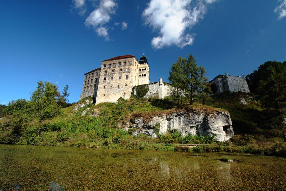 Budowle ze skał wapiennych - Zamek wPieskowej Skale