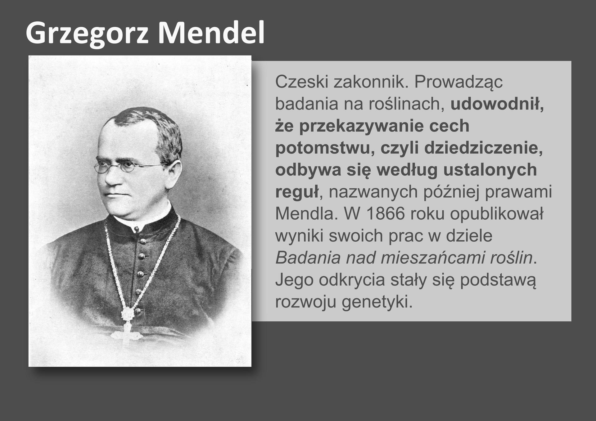 Galeria przedstawia pionierów nauk przyrodniczych. Składa się zdziewięciu slajdów wpostaci ilustracji iumieszczonego obok opisu. Ilustracje pojawiają się kolejno, kiedy klika się wstrzałki, znajdujące się po prawej ilewej stronie ilustracji. Ósmy slajd to czarno – białe zdjęcie Grzegorza Mendla, czeskiego zakonnika ubranego wsutannę. Mendel nosi okulary iduży krzyż na szyi. Wdziewiętnastym wieku prowadził badania na roślinach iudowodnił, że przekazywanie cech potomstwu odbywa się według pewnych reguł. Odkrycia Mendla stały się podstawą rozwoju genetyki.