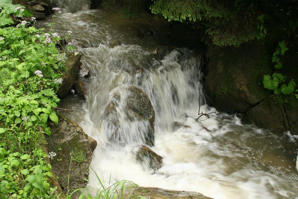 Galeria zdjęć przedstawiająca odcinki rzeki. Fotografia prezentuje bieg górny - wartko płynący, górski potok owąskim korycie.