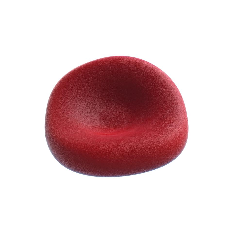 Krwinka czerwona ma kształt spłaszczonego dysku.