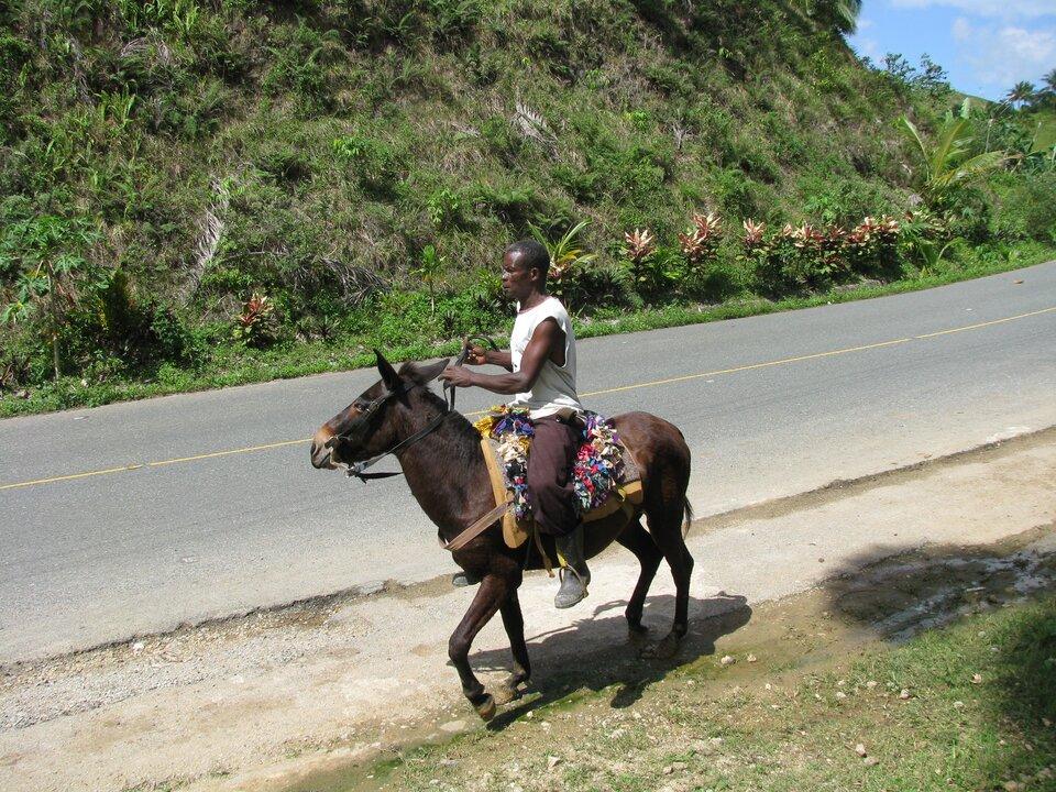 Na zdjęciu ciemnoskóry jeździec na mule. Muł jest koloru ciemnobrązowego. Kolorowy dywanik zkawałków tkanin na grzbiecie muła. Muł idzie poboczem asfaltowej drogi. Zdrugiej strony drogi brak pobocza, gdyż jest tam zbocze góry.