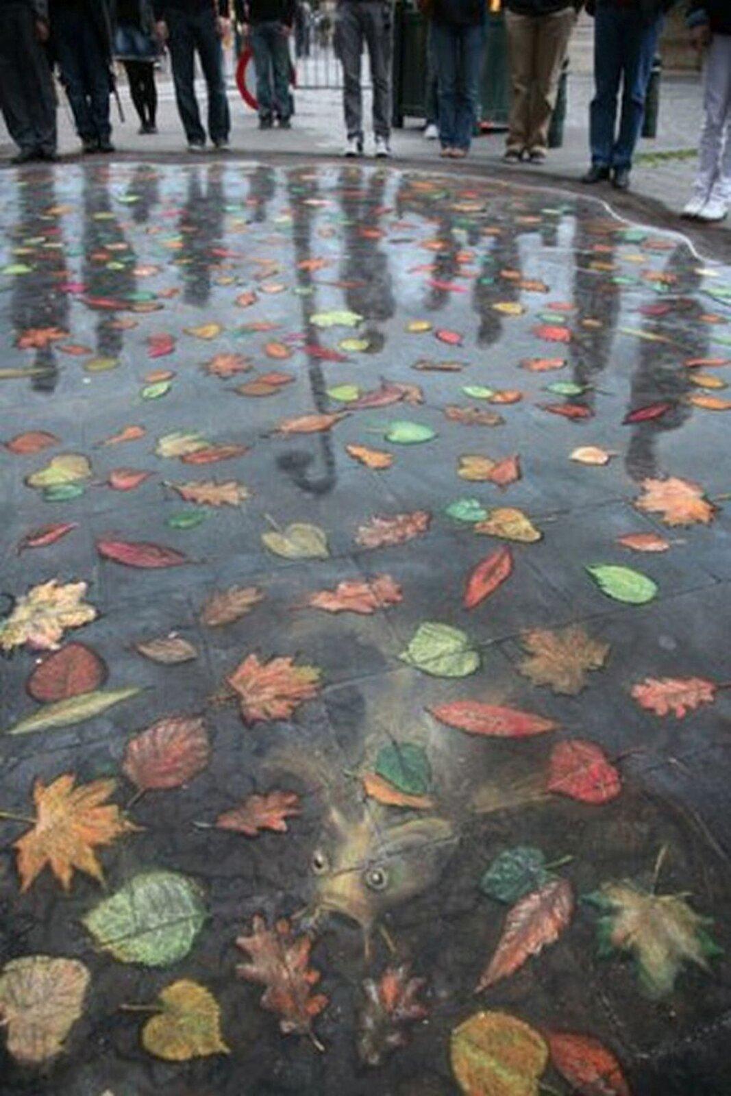 Ilustracja przedstawia graffiti 3D Juliana Beevera. Ukazuje namalowane pastelami na ulicy liście pływające na wodzie. Zgłębi wynurza się sum. Praca sprawia wrażenie realistycznej. Wtle znajdują się postacie oglądające dzieło.