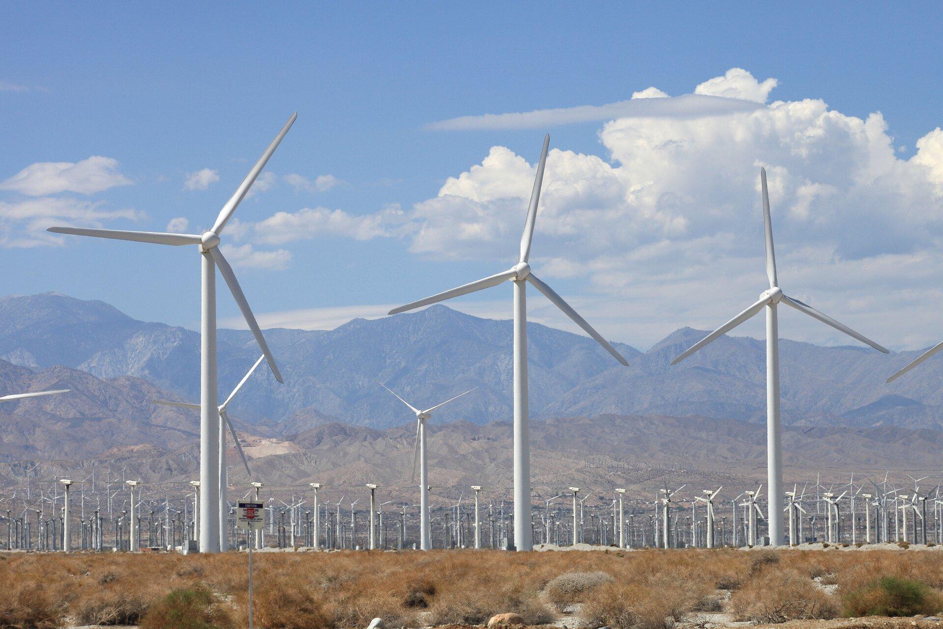Fotografia przestawia kilkadziesiąt jasnych turbin wiatrowych na tlegór. Stoją gęsto ustawione, wśród rudej trawy. Jest słoneczny dzień, błękitne niebo zobłokami.