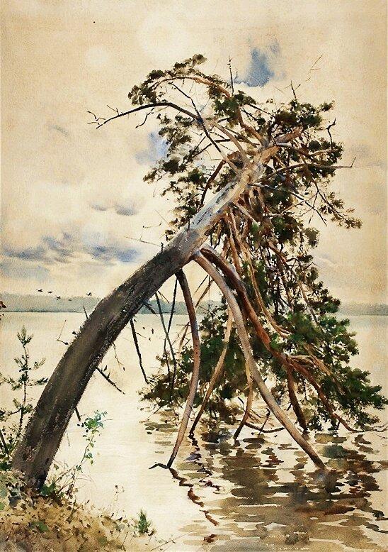 Świteź Źródło: Julian Fałat, Świteź, 1888, akwarela, domena publiczna.