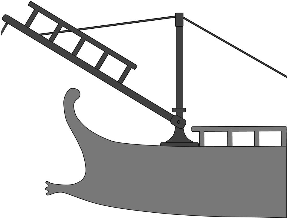 Kruk Źródło: Wikimedia Commons, licencja: CC BY-SA 2.5.