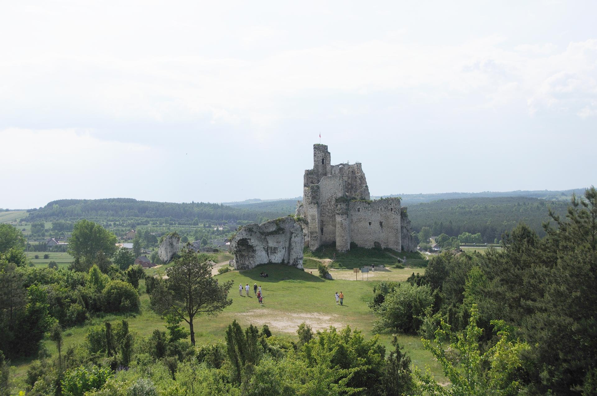 Galeria prezentuje rozmaitość terenów wyżynnych Polski. Pierwsza fotografia, to krajobraz Wyżyny Karkowsko-Częstochowskiej, widoczne ruiny zamku na wzniesieniu, dookoła liczne drzewa ikrzewy.
