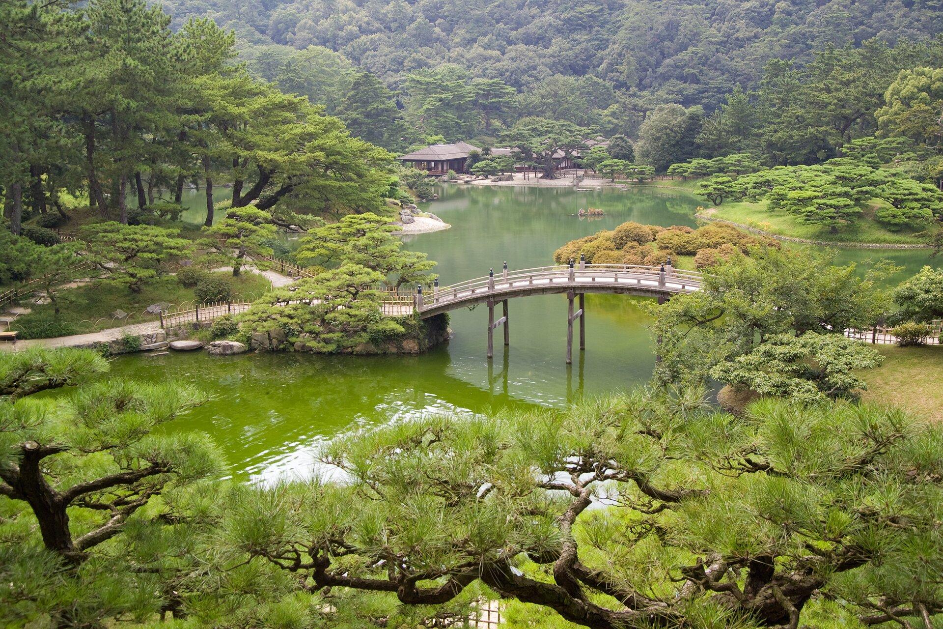 Na zdjęciu zadbany japoński ogród, wyszukany drzewostan, zbiornik wodny imost.