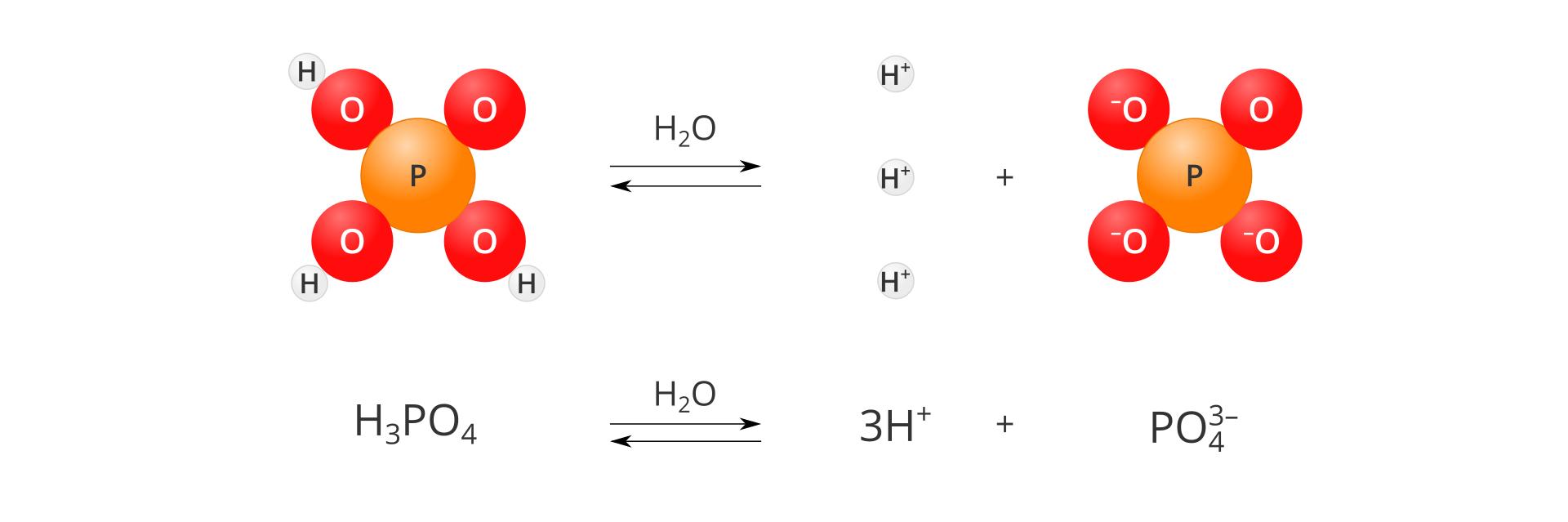 Modelowy schemat dysocjacji kwasu fosforowego pięć. Po lewej stronie planszy znajduje się model cząsteczki kwasu zbudowany zjednej pomarańczowej kuli oznaczonej literą P, przylegających do niej czterech czerwonych kul oznaczonych literą Ooraz trzech szarych, małych kulek oznaczonych literą H, przylegających do trzech atomów tlenu. Po prawej stronie modelu znajduje się znak reakcji dwustronnej wpostaci dwóch równoległych strzałek, zktórych górna skierowana jest wprawo, adolna wlewo. Nad strzałką znajduje się wzór H2O. Środkową iprawą część planszy zajmuje zapis rozpadu na jony: trzy małe szare kulki oznaczone jako Hplus, znak dodawania oraz model reszty kwasowej zpomarańczową kulą iliterą Pwśrodku oraz otaczającymi ją trzema czerwonymi kulami zliterą O. Na trzech ztych kul po lewej stronie litery Owindeksie górnym znajduje się znak minus. Pod ilustracją sumaryczny zapis reakcji: H3PO4 pod wpływem wody dysocjuje na trzy kationy wodoru Hplus ijeden anion siarczanowy SPO4 dwa minus.