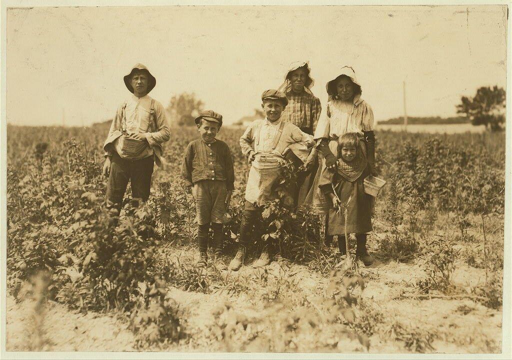 Rodzina Slebzaków na farmie Bottomley Rodzina Slebzaków na farmie Bottomley Źródło: Lewis Wickes Hine, Rodzina Slebzaków na farmie Bottomley, 1909, fotografia, Biblioteka Kongresu USA, domena publiczna.