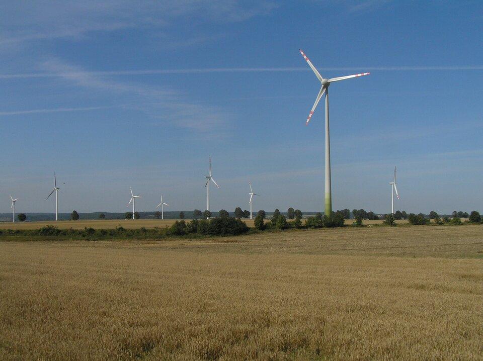 Na zdjęciu kilka wysokich białych turbin wiatrowych wrozległym terenie rolniczym.