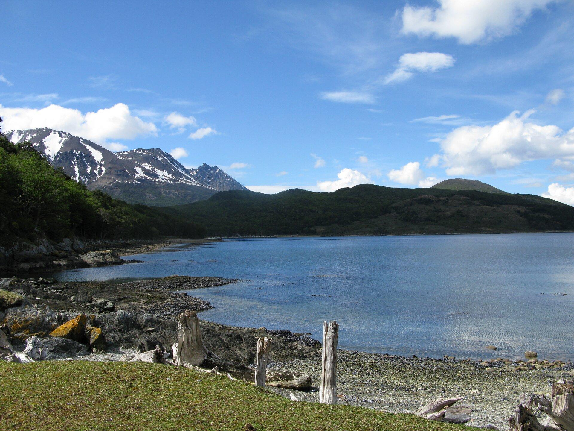 Na zdjęciu brzeg morski, wąska kamienista plaża, suche pnie. Wtle kilka szczytów, śnieg leży na stokach.