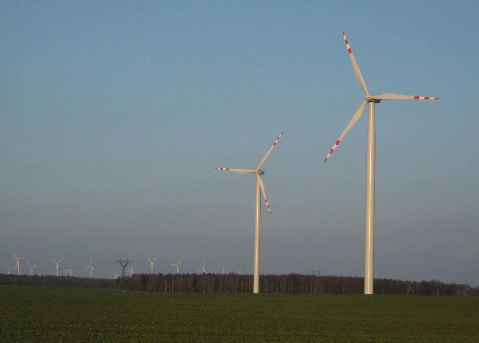 Na zdjęciu kilkanaście turbin wiatrowych wpłaskim terenie.