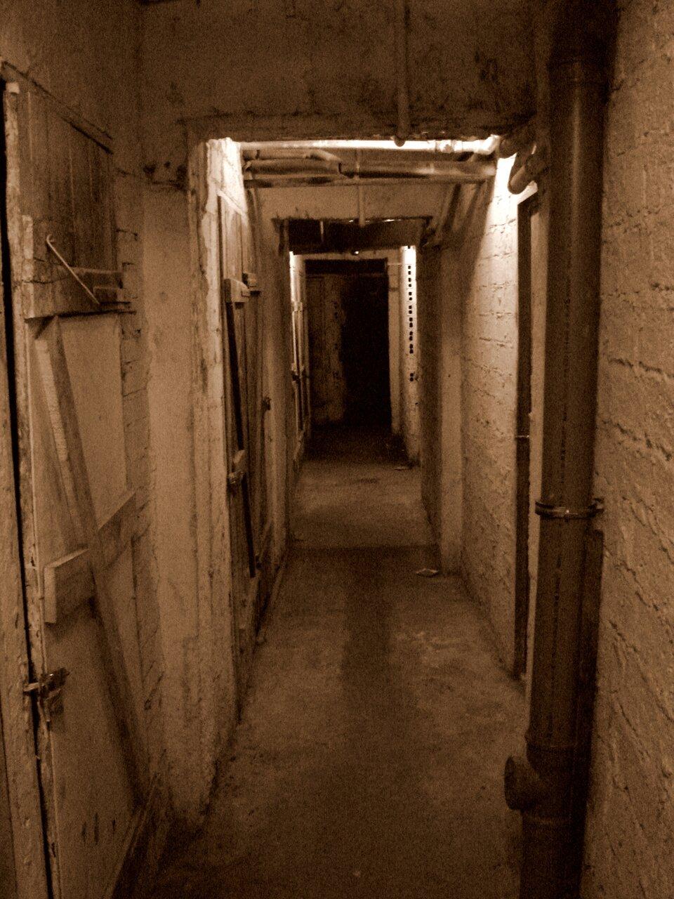 Zdjęcie przedstawia korytarz wpiwnicy bloku mieszkalnego ukazany wperspektywie zbieżnej. Po obu stronach korytarza białe ściany zcegły, wzdłuż korytarza po lewej stronie kilka par drewnianych zamkniętych drzwi zdesek zamkniętych na kłódki. Po prawej stronie na pierwszym planie pion kanalizacyjny, aza nim drzwi wyjściowe. Posadzka wylana zbetonu. Piwnicę oświetlają dwa źródła światła pod sufitem, poza tym panuje tu półmrok zcałkowicie ciemnym końcem korytarza.