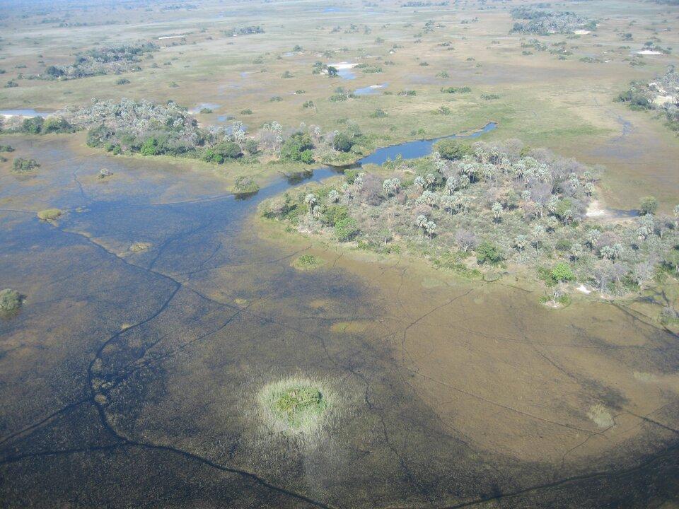 Na zdjęciu płaski teren, rozległe rozlewisko, gdzieniegdzie drzewa.