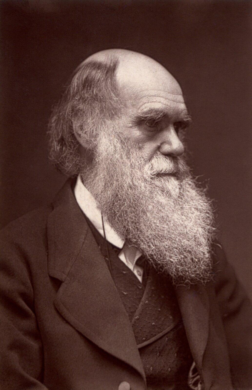 Ilustracja przedstawia profil starszego mężczyzny zdługą brodą.