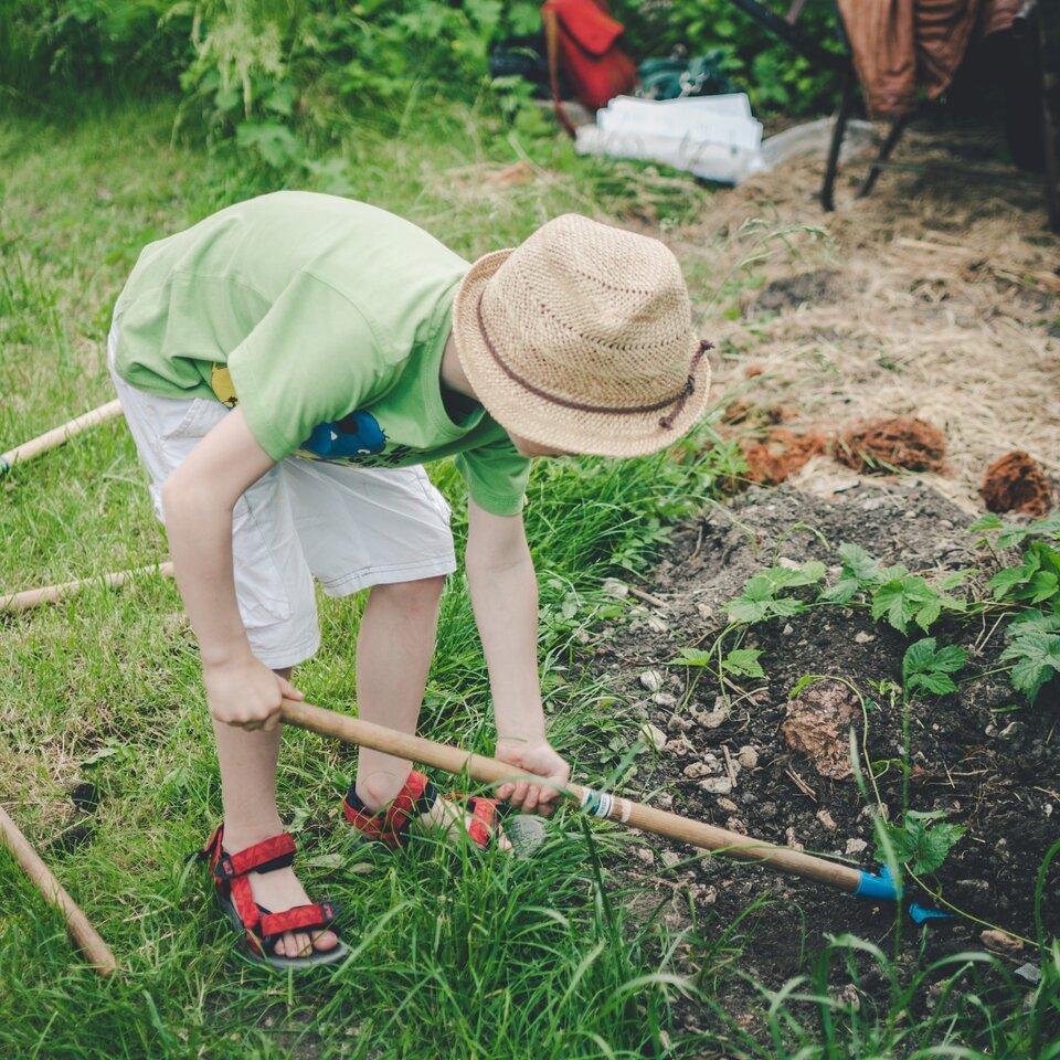 Zdjęcie przedstawia dziecko uprawiające rośliny wogródku.