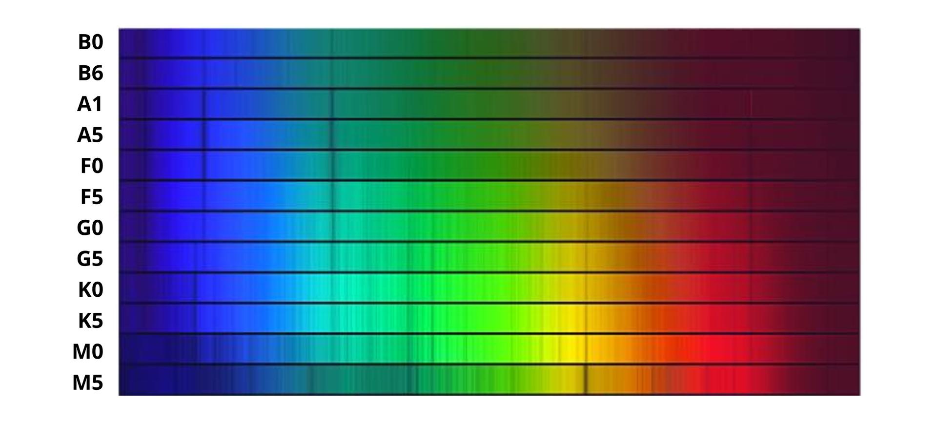 Ilustracja przedstawia widma gwiazdowe. Widma gwiazdowe to poziomo ułożone cienkie prostokątne pasy. Każdy pas ma długość około piętnaście centymetrów. Wysokość to około osiem milimetrów. Pasy tworzą duży poziomo ułożony prostokąt. Cały prostokąt tworzy dwanaście widm gwiazdowych. Powierzchnia widm zmienia kolory od niebieskiego, przechodzi wbłękit, zieleń, żółty, pomarańczowy, czerwony ibordowy. Kolory zmieniają się wzależności od wielkości gwiazdy i