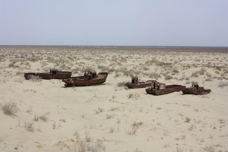 Wraki pięciu łodzi na środku piaszczystego terenu porośniętego kępami suchych traw.