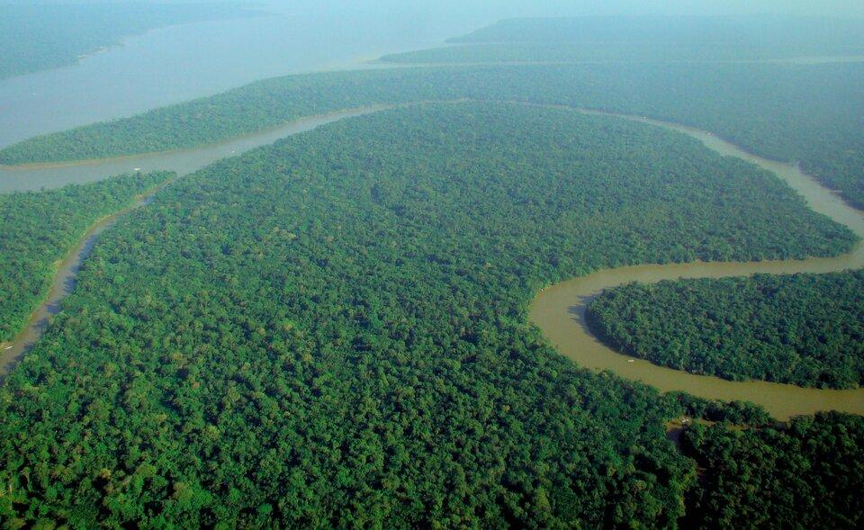 Na zdjęciu lotniczym rozległa płaska nizina porośnięta lasami, szeroka rzeka zlicznymi węższymi dopływami.