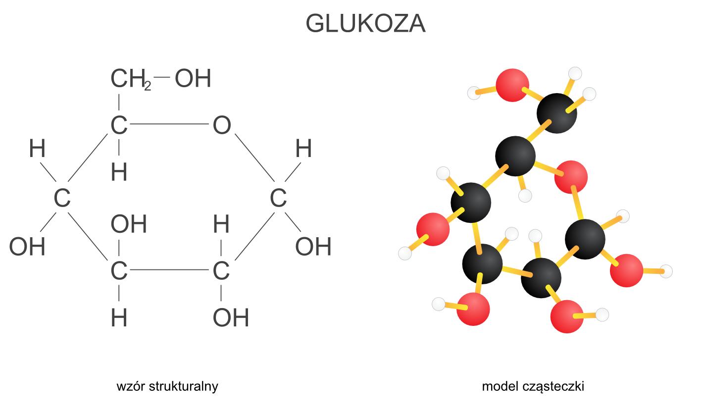 Budowa glukozy