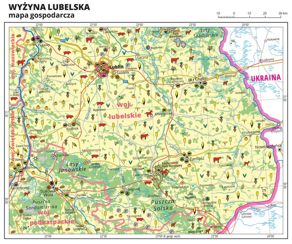 Ilustracja przedstawia mapę gospodarczą Wyżyny Lubelskiej. Tło mapy wkolorze żółtym (grunty orne), jasnozielonym (łąki ipastwiska) izielonym (lasy). Mapa obejmuje tereny od Puław iSandomierza na zachodzie po wschodnią granicę Polski zUkrainą, wcentralnej części mapy województwo lubelskie. Na mapie sygnatury obrazujące uprawy poszczególnych roślin, hodowlę zwierząt, przemysł, górnictwo ienergetykę, komunikację, turystykę, naukę, kulturę isztukę. Największe zagęszczenie sygnatur wLublinie. Duże zagęszczenie sygnatur wPuławach, Sandomierzu, Stalowej Woli, Zamościu iChełmie. Na obszarze całej mapy rozmieszczone sygnatury hodowli iupraw. Na mapie przedstawiono sieć dróg ikolei, porty wodne ilotnicze, granice województw, granicę państwa. Opisano województwa mazowieckie, świętokrzyskie, podkarpackie ilubelskie. Opisano kompleksy leśne, na przykład Lasy Janowskie iparki narodowe. Opisano Ukrainę. Mapa zawiera południki irównoleżniki, dookoła mapy wbiałej ramce opisano współrzędne geograficzne co trzydzieści minut.
