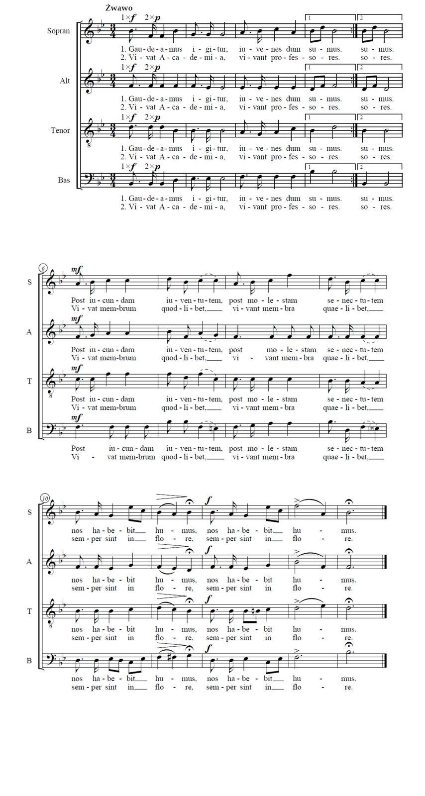 """Pełny zapis nutowy utworu """"Gaudeamus igitur"""". Utwór przeznaczony jest na 4 głosowy chór mieszany. Każdy system składa się z4 pięciolinii. Pierwsza znich przeznaczona jest dla sopranu, druga dla altu, trzecia dla tenoru, czwarta dla basu. Cały utwór składa się z3 systemów. Na początku każdej pięciolinii pojawia się klucz (w 3 górnych sopranowy, w4 basowy) po kluczu dwa bemole bies. Pierwsze dźwięki utworu to wkolejności: b, f, d, b."""