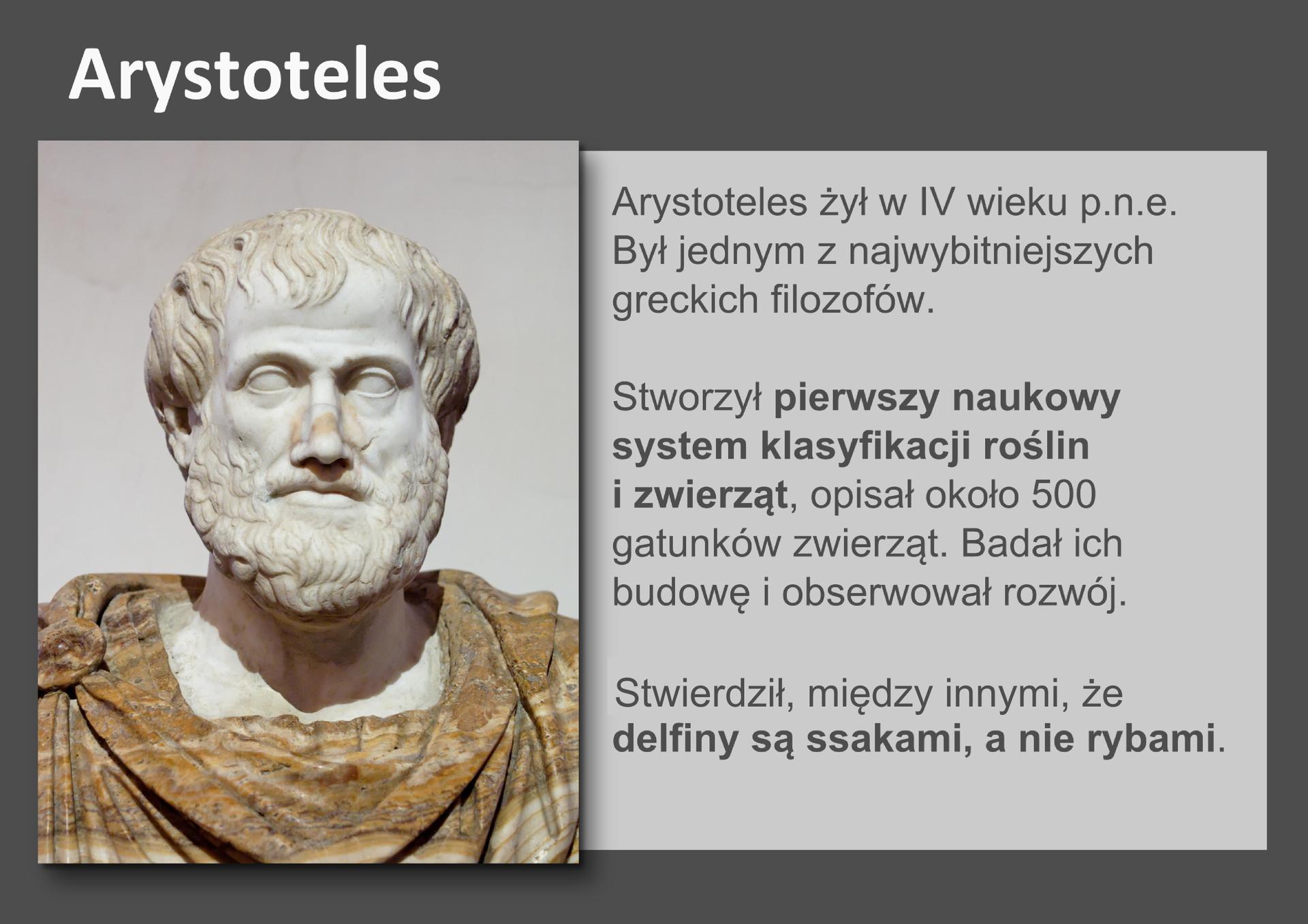 Galeria przedstawia pionierów nauk przyrodniczych. Składa się zdziewięciu slajdów wpostaci ilustracji iumieszczonego obok opisu. Ilustracje pojawiają się kolejno, kiedy klika się wstrzałki, znajdujące się po prawej ilewej stronie ilustracji.Na pierwszym slajdzie widać marmurowe popiersie Arystotelesa, który żył wGrecji wczwartym wieku przed naszą erą. Jest on jednym znajwiększych filozofów. Stworzył pierwszy naukowy system klasyfikacji roślin izwierząt, wktórym opisał około 500 gatunków. To on między innymi stwierdził, że delfiny to ssaki, anie ryby.