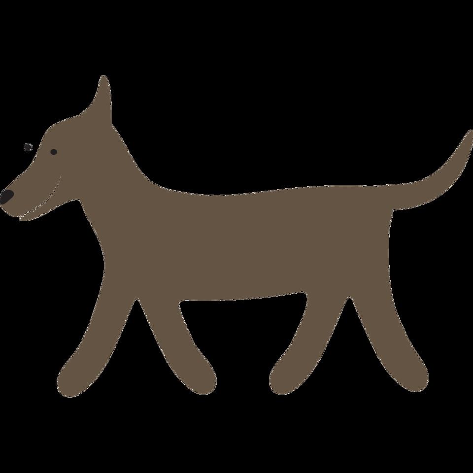 Pies2 Źródło: Contentplus.pl sp. zo.o., licencja: CC BY 3.0.