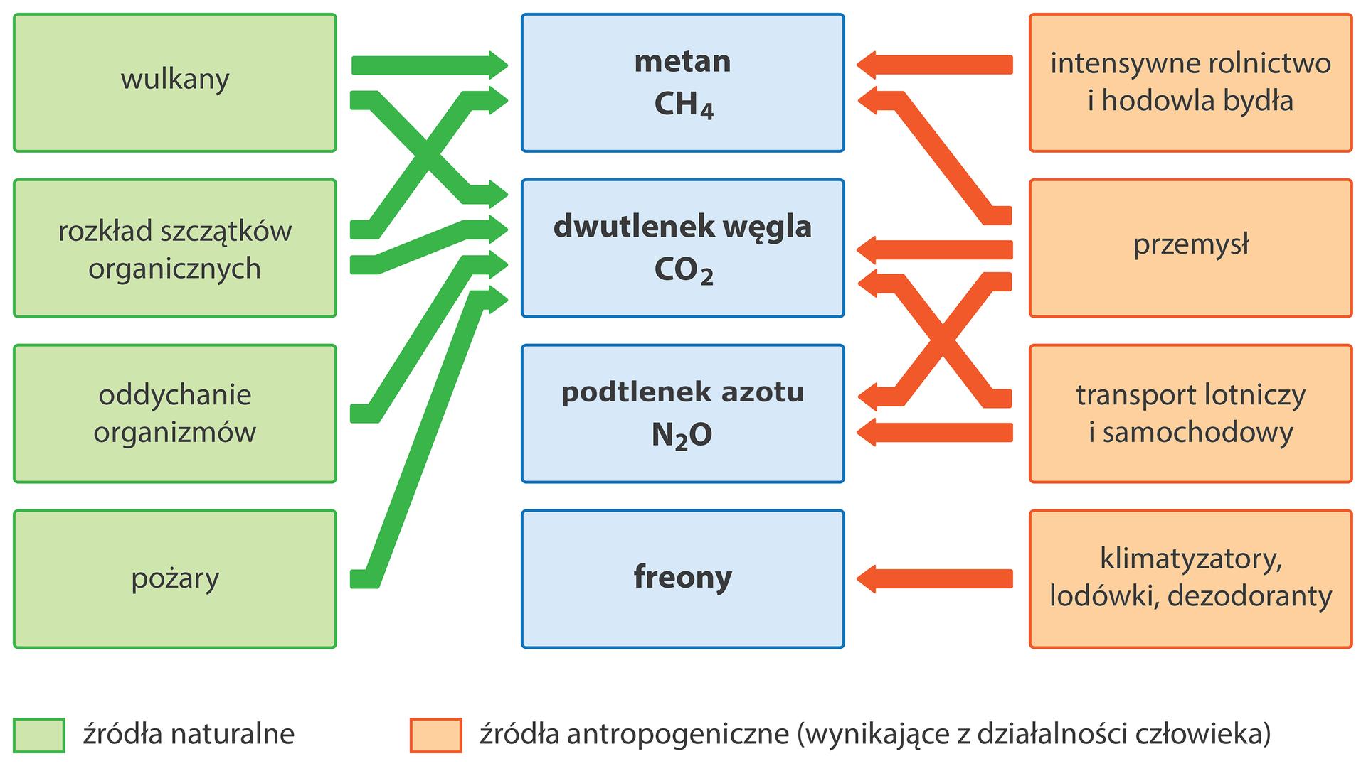 Naturalne źródła gazów to wulkany, rozkład szczątków organicznych, oddychanie organizmów, pożary. źródła antropogeniczne to rolnictwo ihodowla bydła, przemysł, transport, klimatyzatory.