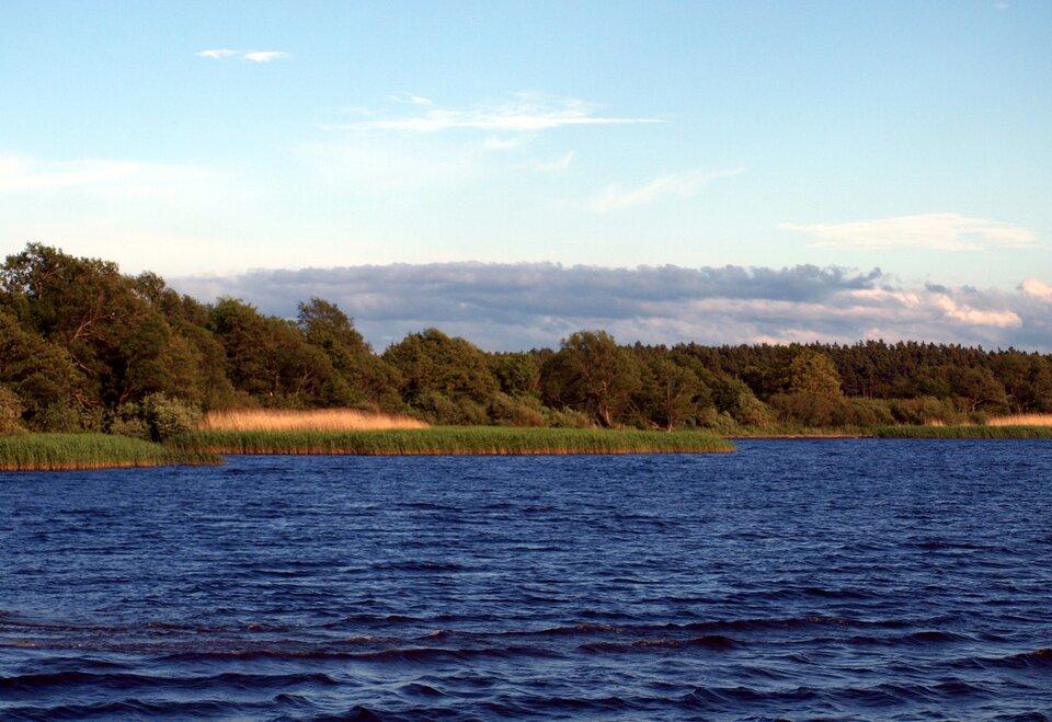 Na zdjęciu jezioro, na drugim brzegu trzciny, dalej las.