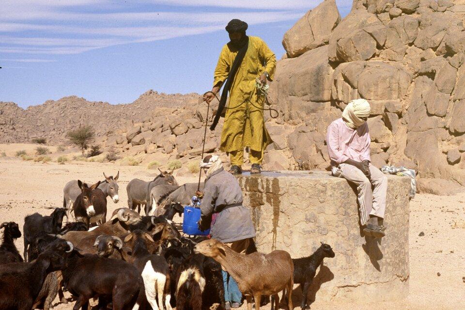 Na zdjęciu trzej pasterze poją kozy iosły wodą nabieraną plastikowym wiadrem zkamiennej studni. Wtle kamienne skały.